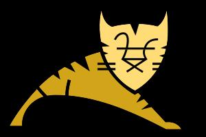 Tomcat Hosting