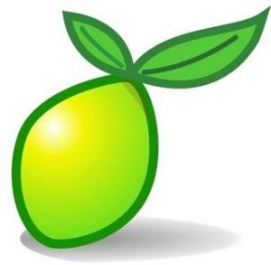 LimeSurvey300