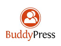 BuddyPress Hosting
